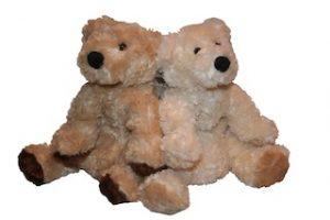 Plush Soft Cuddly Bear