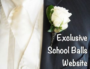 School Ball Website