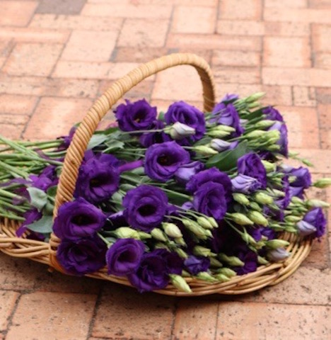 Basket Hire Single Flowers