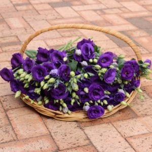 Basket Hire Single Flowers