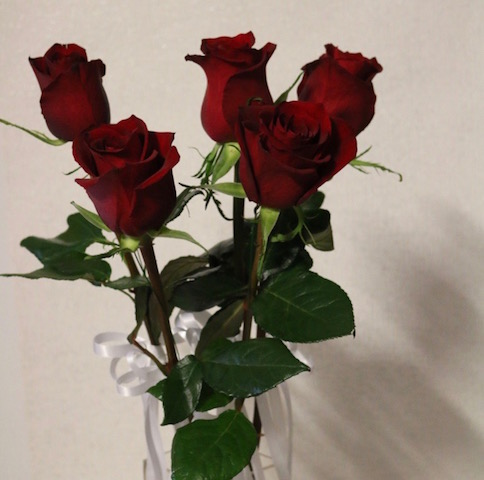 Single Rose with Bow